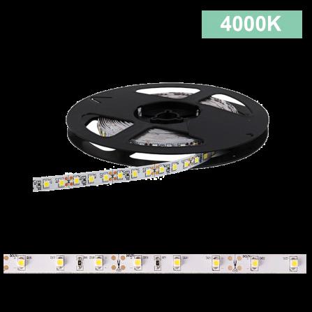 Ταινία LED 4.8W/m CHIP 3528 60chips/m 4000K (ΦΩΣ ΗΜΕΡΑΣ) 240Lm IP54 12V
