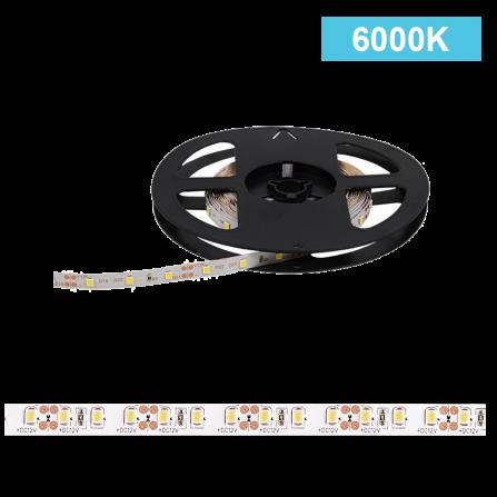 Ταινία LED 12W/m CHIP 2538 120chips/m 6000K (ΨΥΧΡΟ) 1440Lm IP20 12V